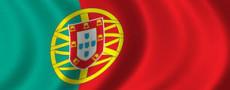 Cultura e Memória na Literatura Portuguesa